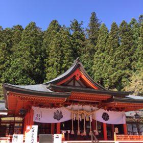 山梨県甲府市金櫻神社