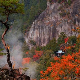 山全体が国の名勝・天然記念物に指定されている鳳来寺山